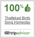 Thattekkad Birds Song Homestay