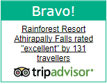 Rainforest Resort