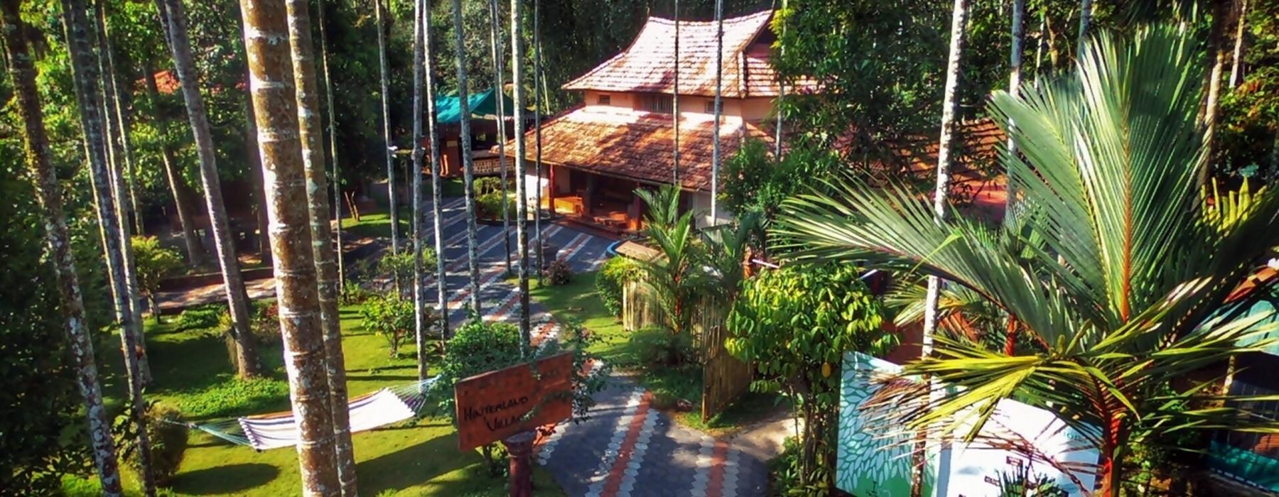 Yoga Retreats in Kerala