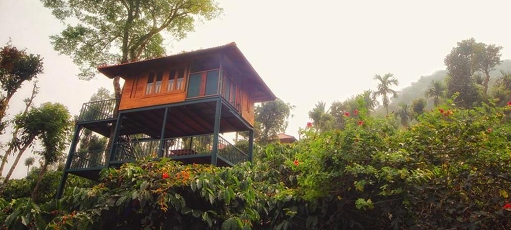 Marmalade Springs- Wayanad