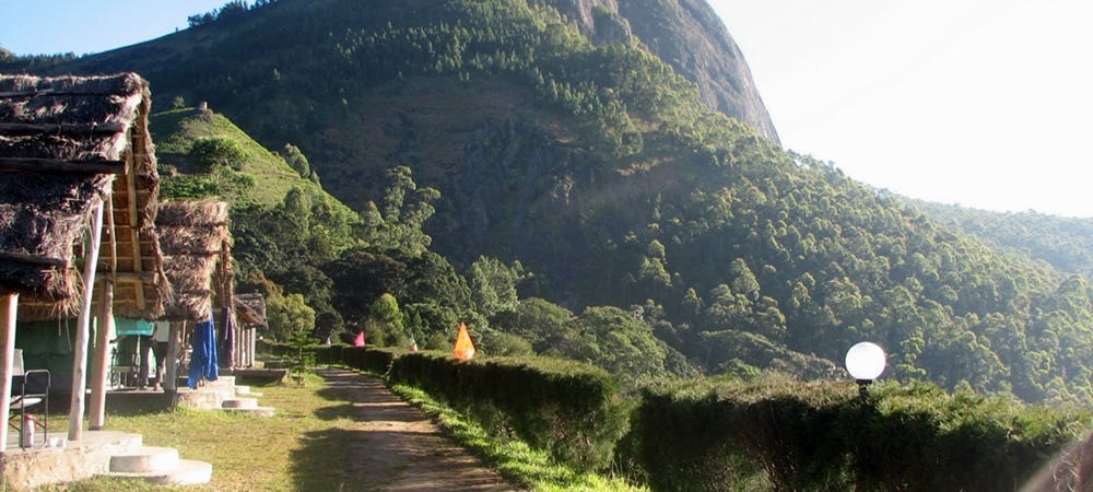 Experience Kerala  Top 6 Sites For Tent Camping In Munnar -3474