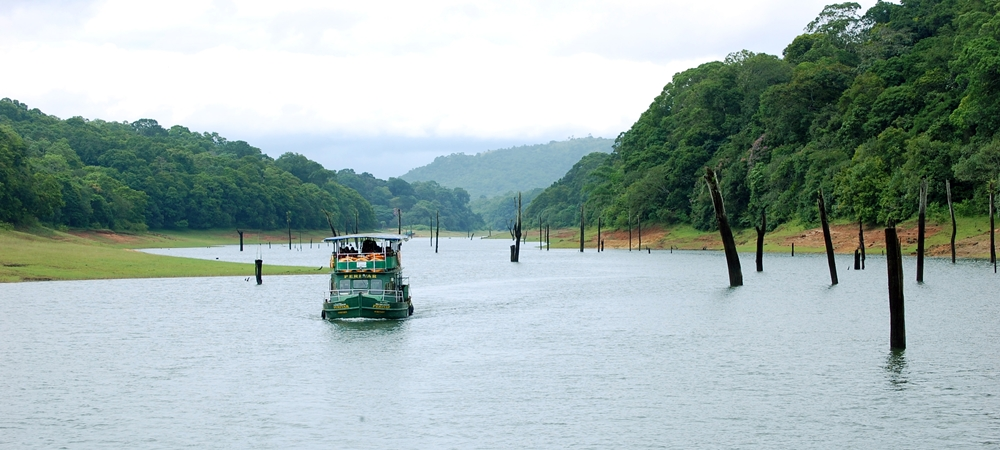 A boat cruise across the scenic Periyar Lake