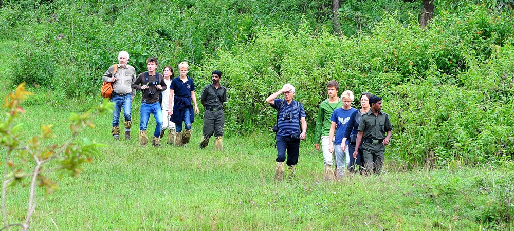A large group of tourists in the middle of their nature walk