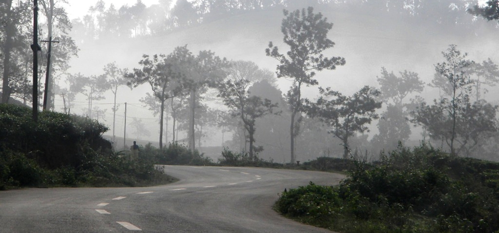 The misty weather during winter in Kerala
