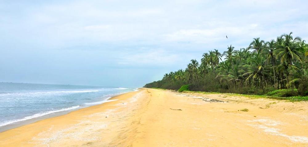 The calm and quiet Kavvayi Beach