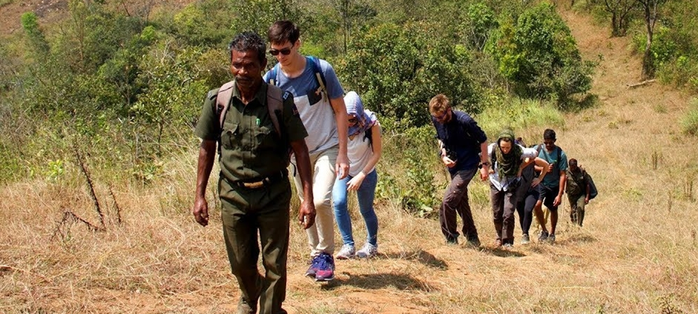 A group of foreigners enjoying a border hike in Periyar