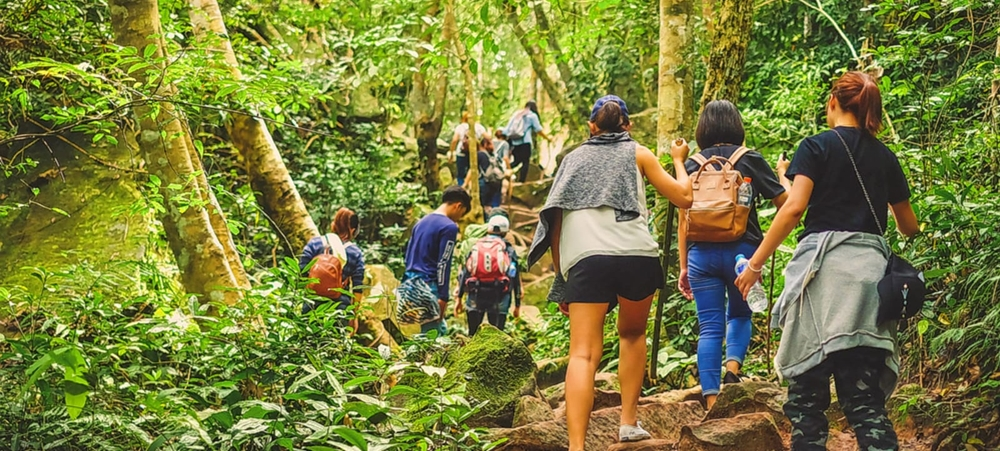 A group travelers in a forest enjoying a walk