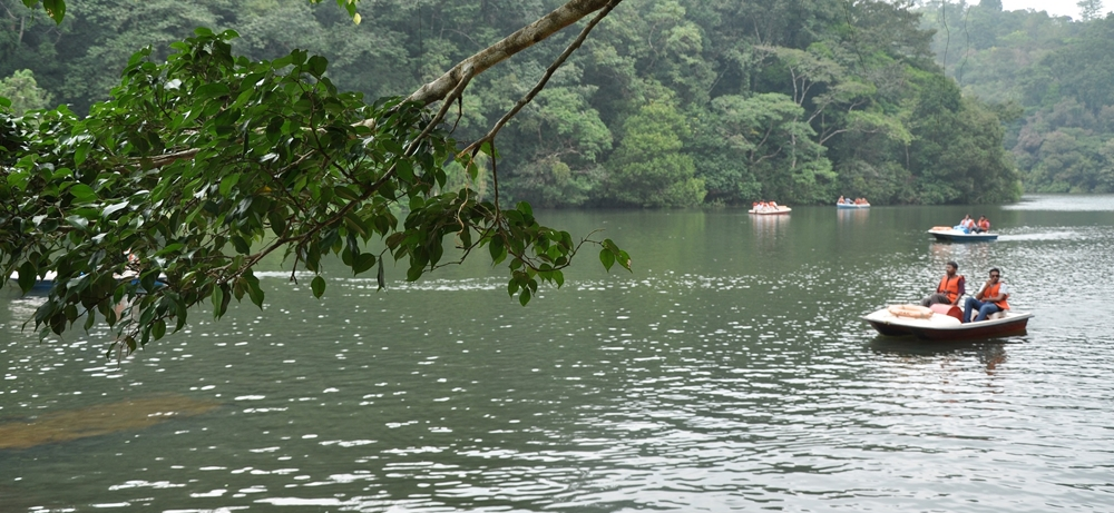 Boating at the serene lake