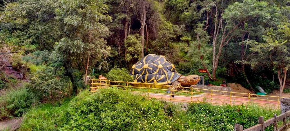 A giant tortoise sculpture at the entrance of the sanctuary