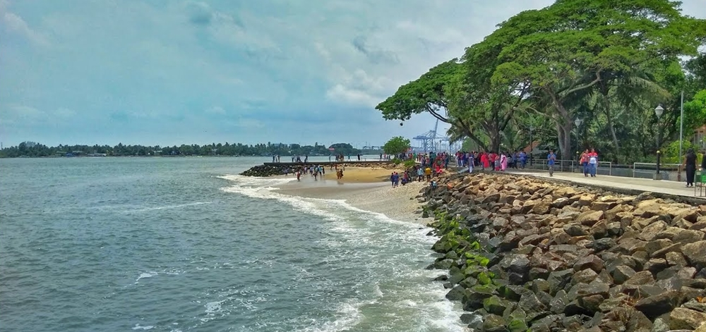 The rocks and trees on the Fort Kochi Beach