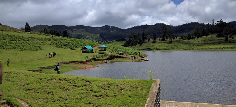 A lake surrounded by lush greenery