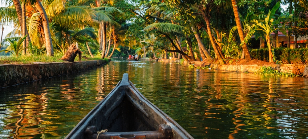 A canoe traversing the placid backwaters