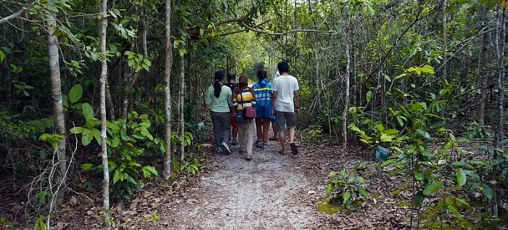 A group of travellers trekking in the Gavi forest