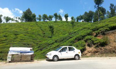 Kerala taxi service
