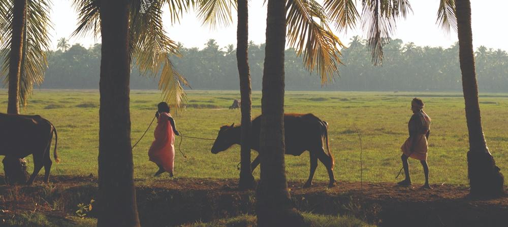 Village in Kerala