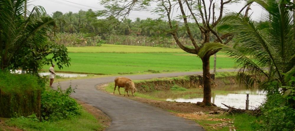 Kerala Village