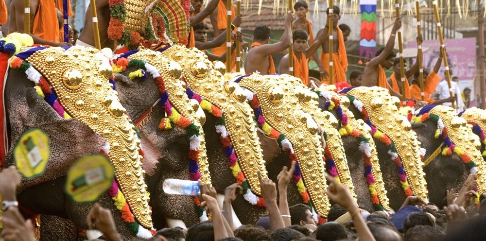 Elephants with Nettipattam