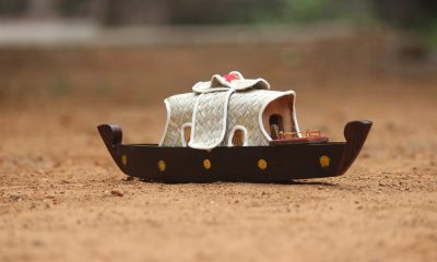 Kerala houseboat model