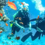 Two scuba divers in the ocean