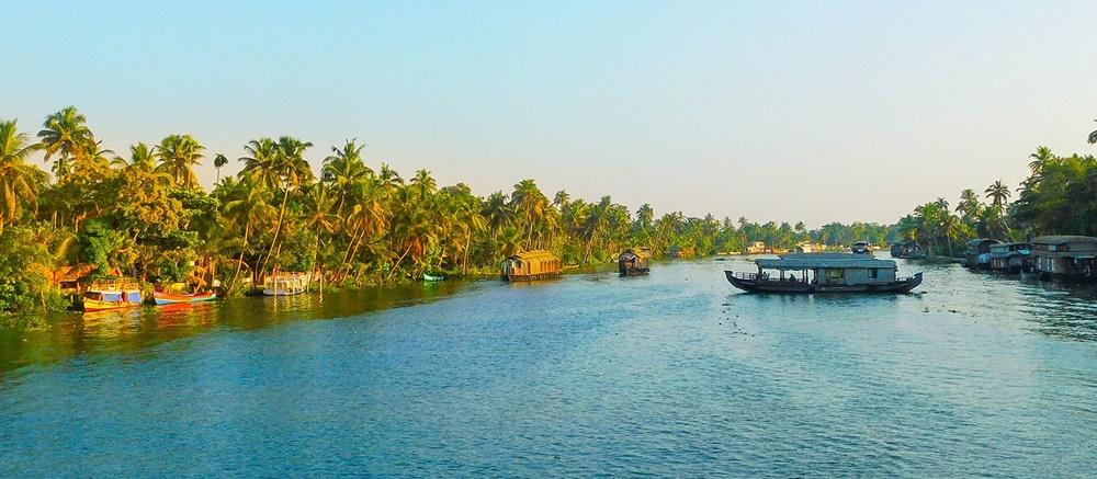 Palm-fringed shoreline
